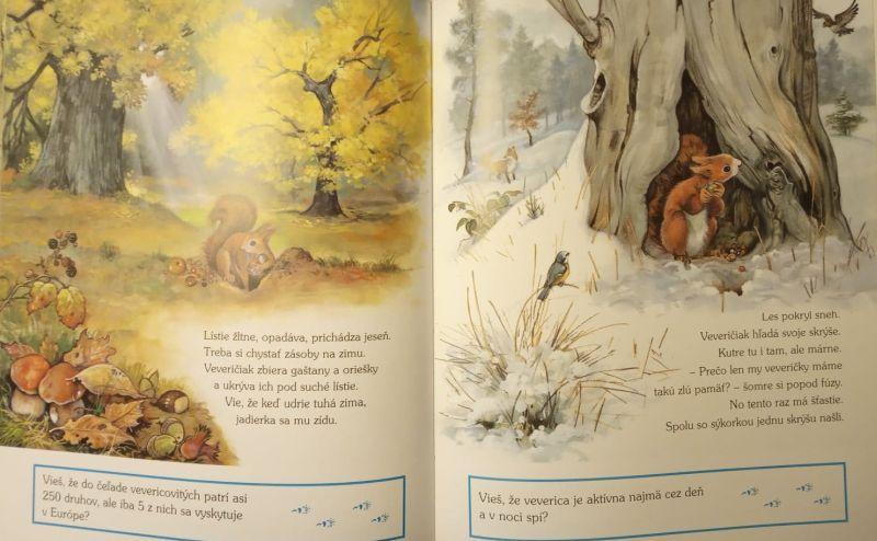 kolektiv autorů - Príbehy z lesných brložkov