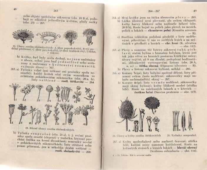 František Polívka - Klíč k určování rostlin, vyskytujících se u nás nejčastěji