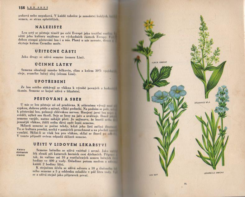 R.B. Hruška - Jak se léčit rostlinami